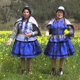 Duo Clavelina