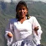 Gaviota Del Cusco