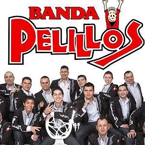 Banda Pelillos