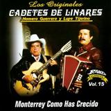 Monterrey, Cómo Has Crecido