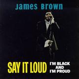 Say It Loud Im Black and Im Proud