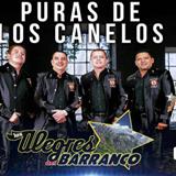 Puras De Los Canelos De Durango