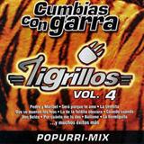 Cumbias Con Garra, Vol.4